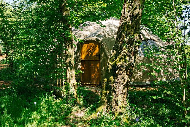 Elegant glamping in woods at Penhein
